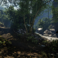 berker-siino-forest-2.jpg_1456410275.jpg