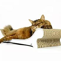 Le canapé.webp