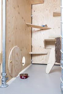 Kattenkamer met natuurlijke materialen - Kattenhotel 'Kat op hotel'