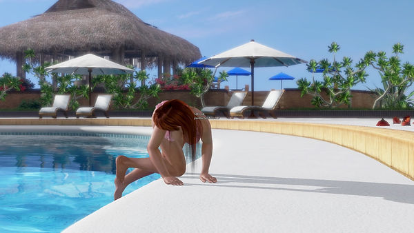 DEAD OR ALIVE Xtreme 3 Fortune photo.jpeg