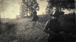 Red Dead Redemption 2_20201003232538