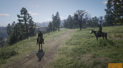 Red Dead Redemption 2_20201104152016