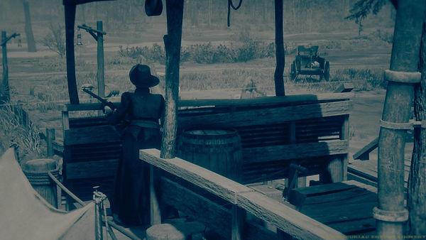 Red Dead Redemption 2_20200930062844.jpg