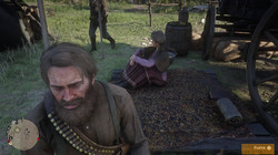 Red Dead Redemption 2_20201003234927