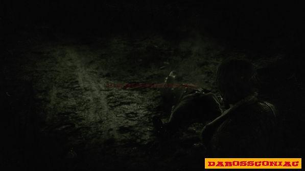 Red Dead Redemption 2_20200929005241.jpg
