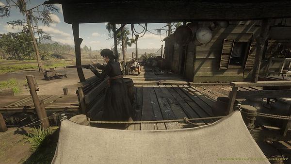 Red Dead Redemption 2_20200930062219.jpg