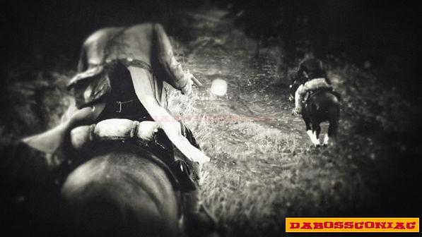 Red Dead Redemption 2_20200929005949.jpg
