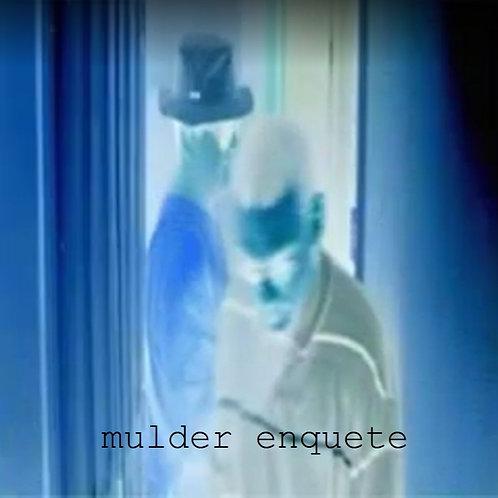 Film | Mulder enquette (2011)