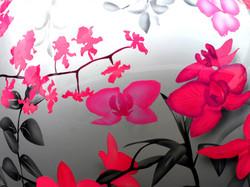 Orchidees03.jpg