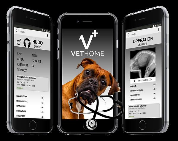 vethome pitch deck start up haustier hund katze digital krankenakte