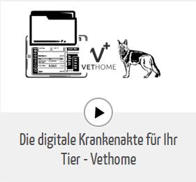 Vethome - die digitale Krankenakte für ihr Tier