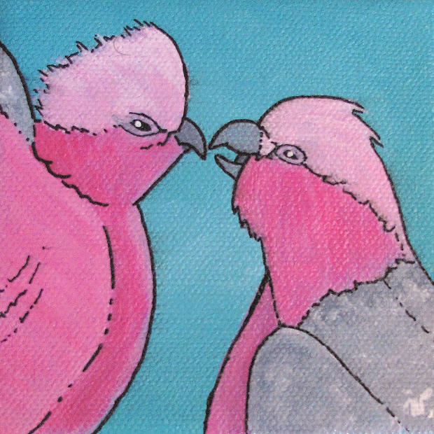 Galahs - Original Artwork 4x4""