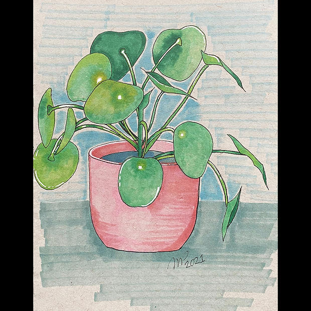 Pilea - Original Artwork - Print