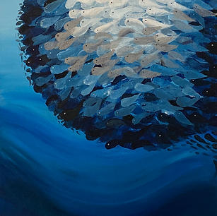 "Herring Bait Ball - Original Artwork 16x12"" SOLD"
