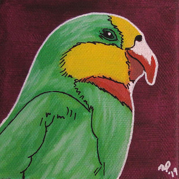 Superb Parrot - Original Artwork 4x4""