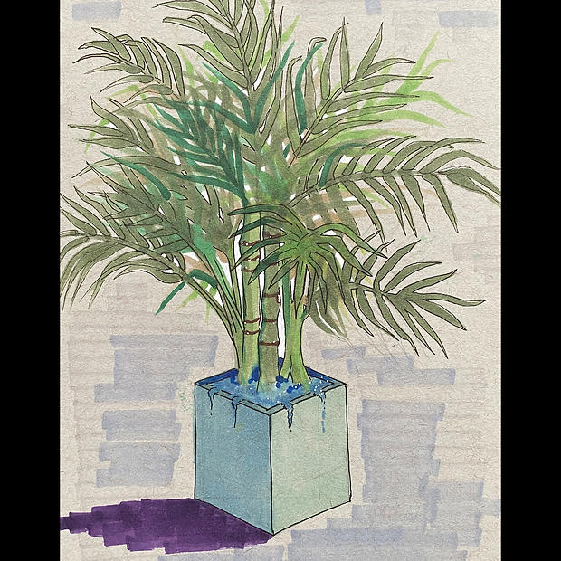 Areca Palm - Original Artwork - Print