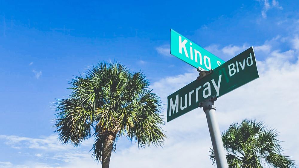 palmy na tle błękitnego nieba i drogowskazy