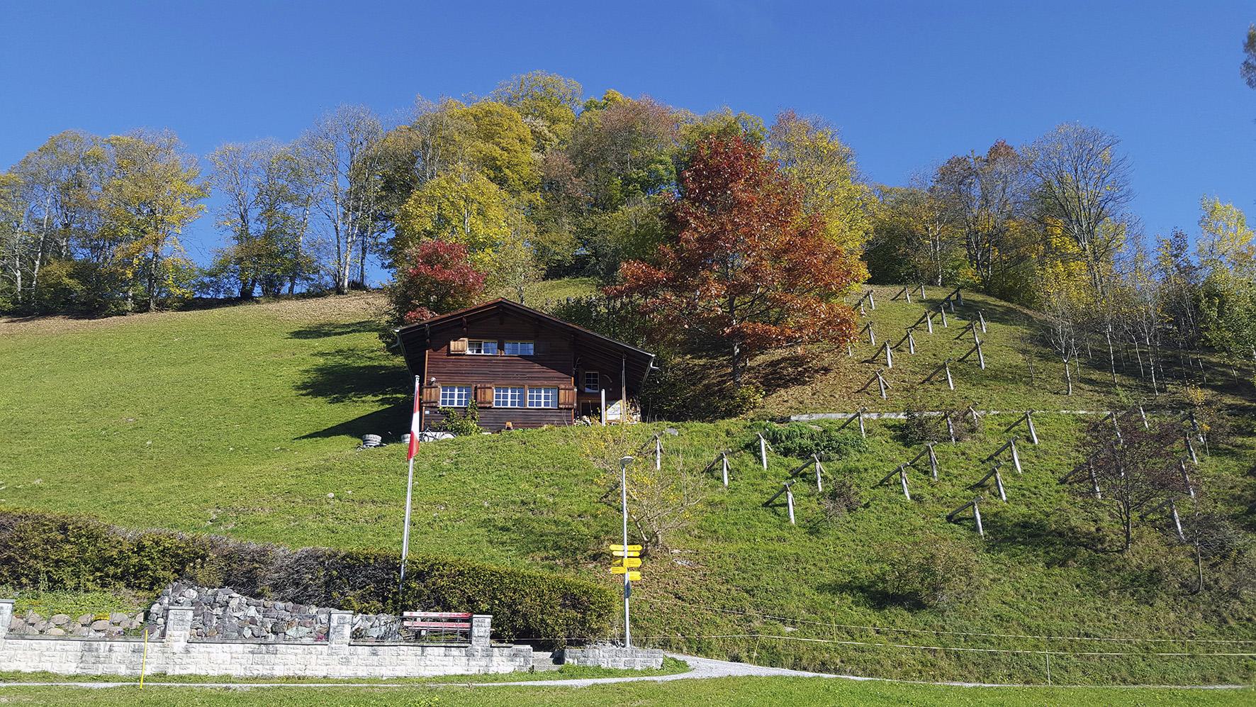 Weissenberge Herbst