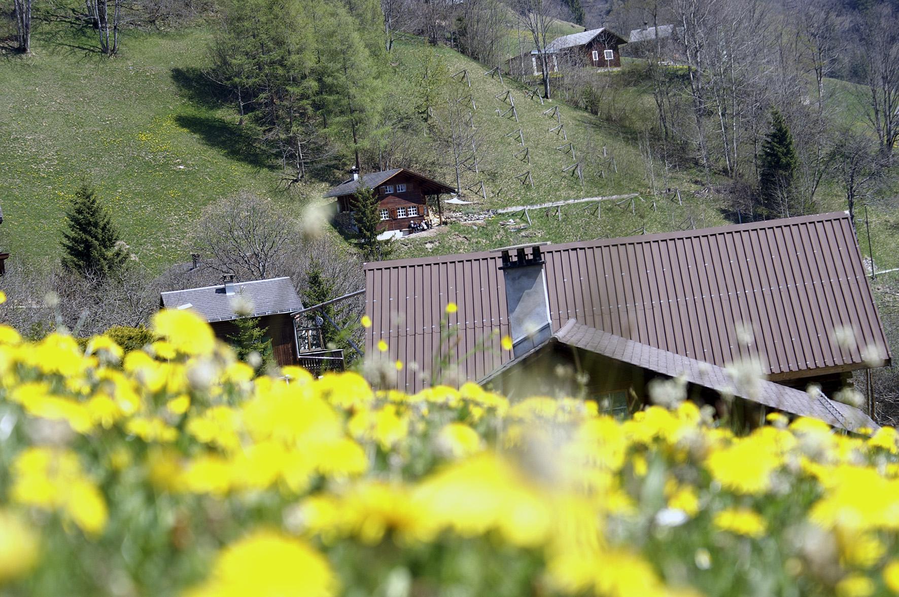 Weissenberge Gfell Nachbarn