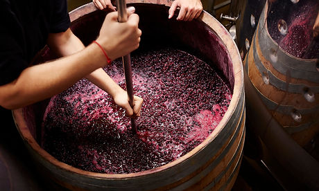 winemaking-526617659.jpg