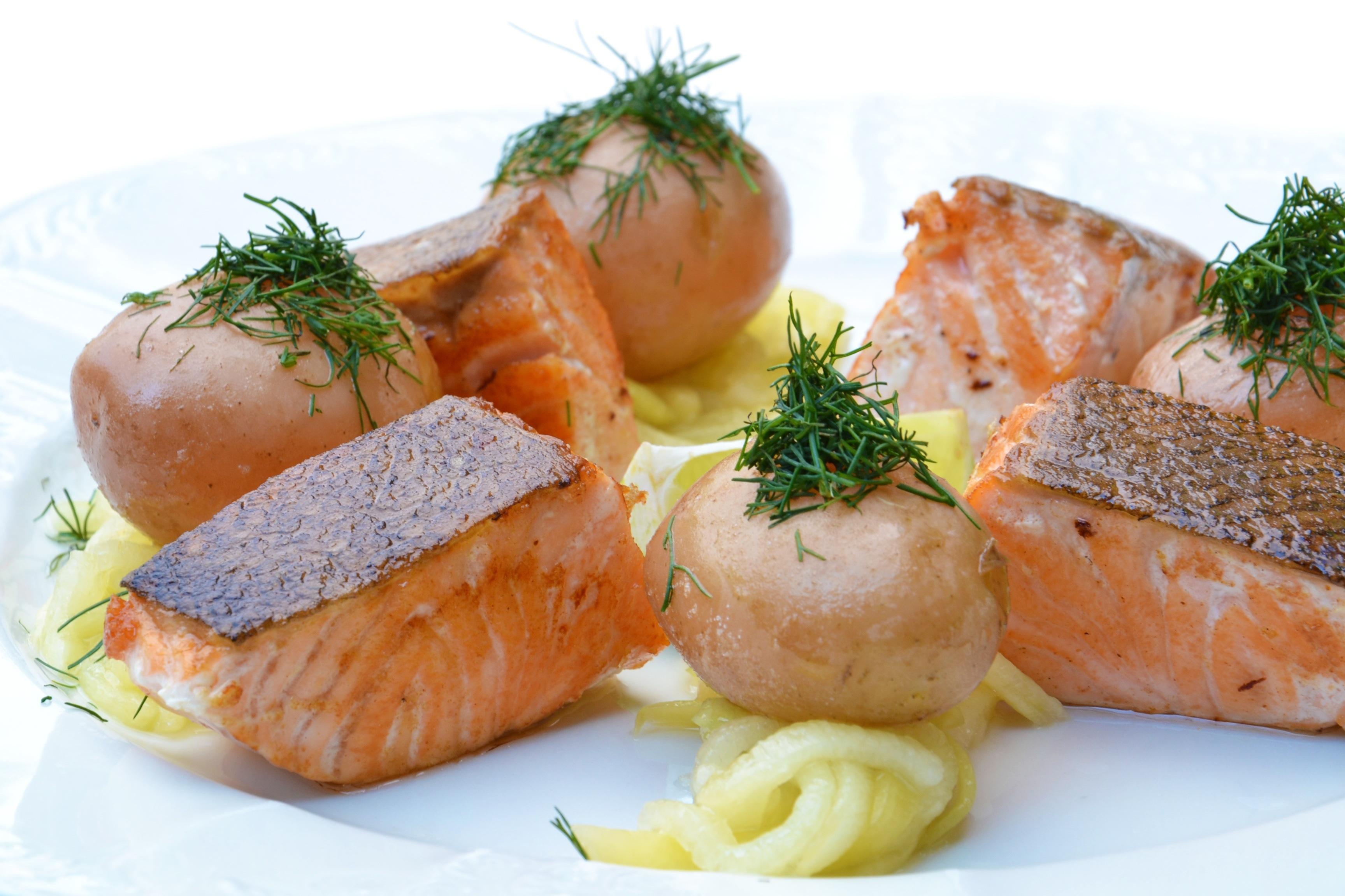 salmon-food-pumpkin-42270
