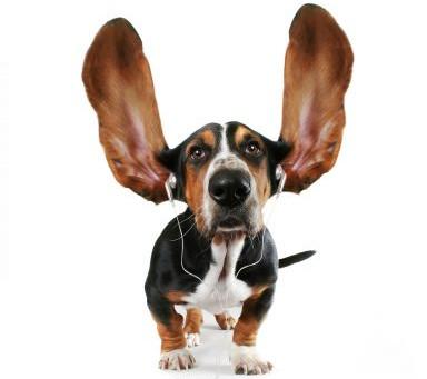 Ascoltare e accogliere