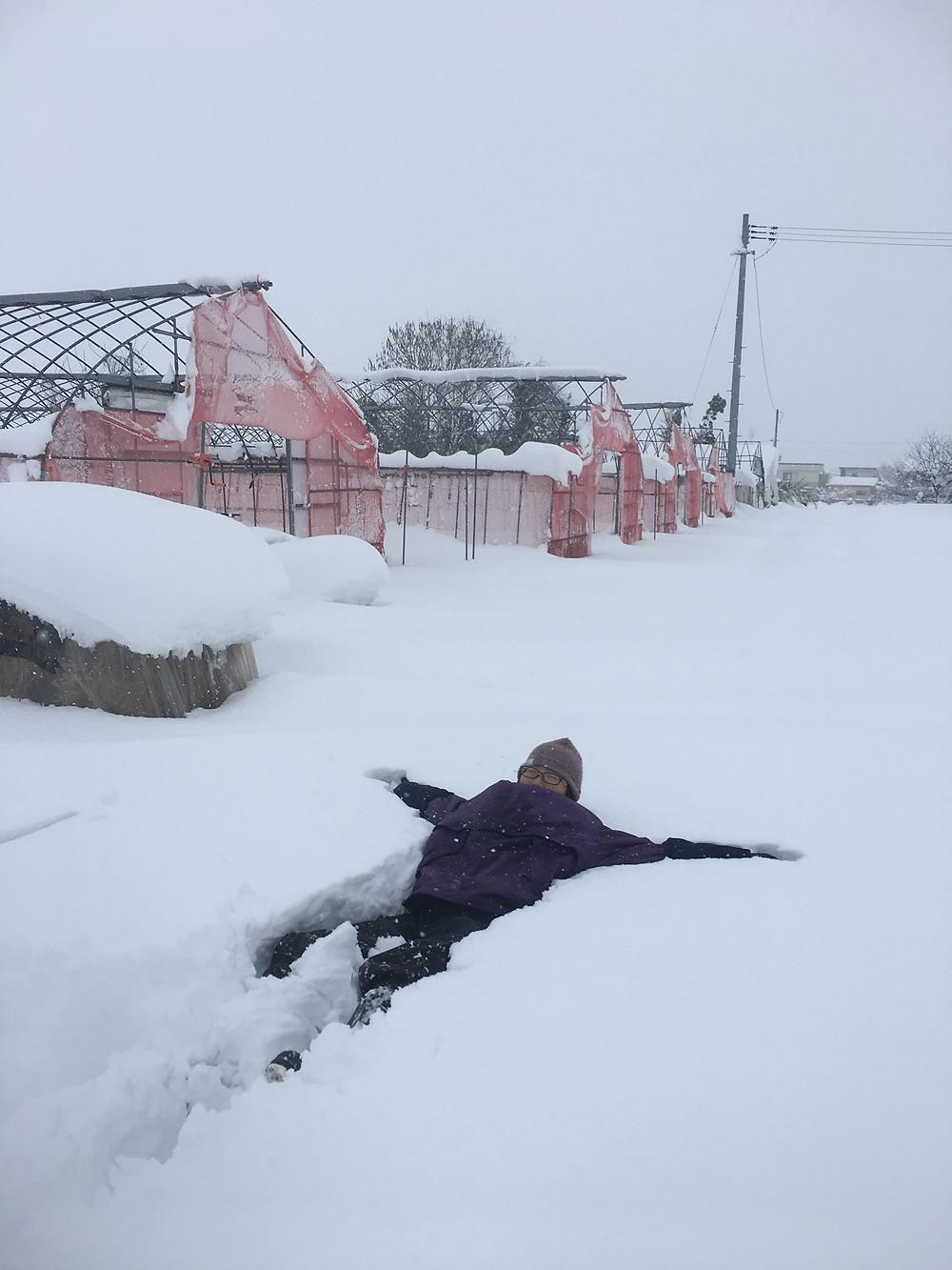 雪に寝てみました
