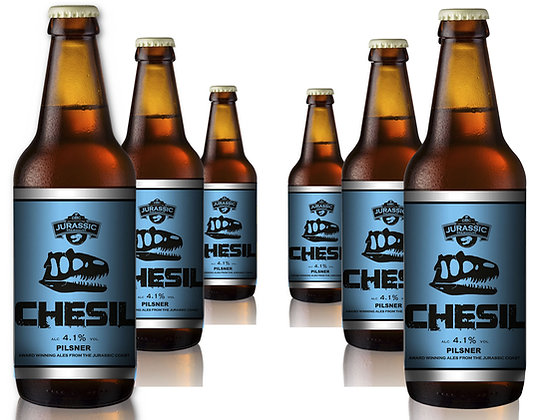 Chesil Pilsner, 4.1% - 6 x 500ml