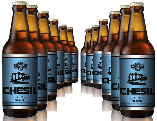 Chesil Pilsner, 4.1% - 12 x 500ml