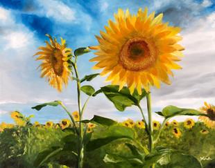 My Happy Sunflowers