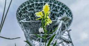 Однодневные научные экскурсии на Байкале - июль 2020