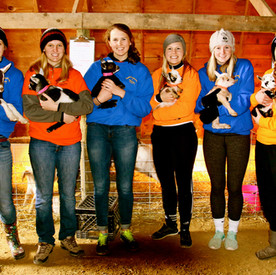 Lots of great staff to help hold baby animals