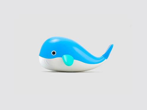 Baleia flutuante