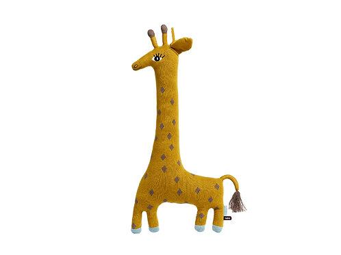 Noah, a girafa
