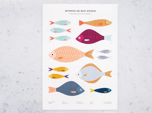 Poster Peixe
