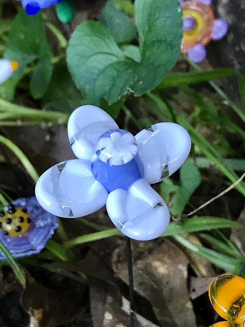 4 petaled white flower blue center