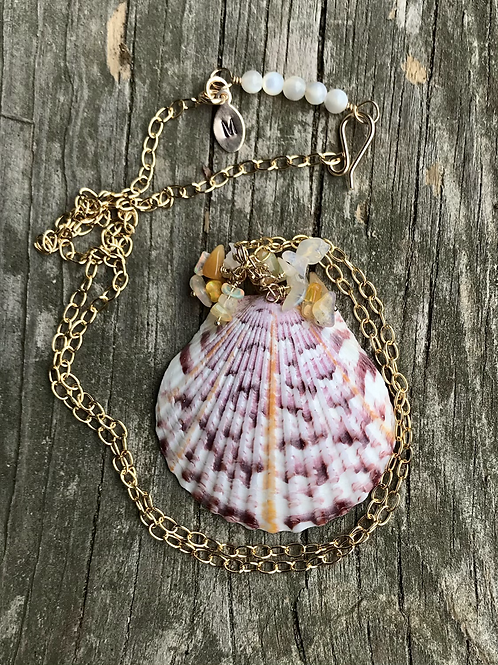 Collected shell
