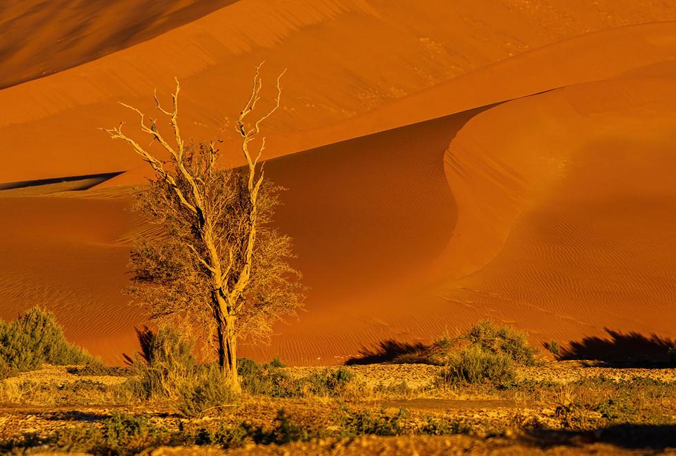 Sossusvlei Landscape 2