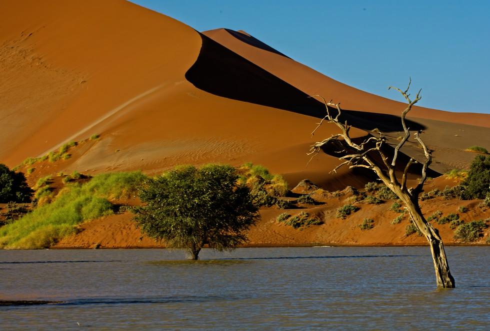 Sossusvlei Flooded