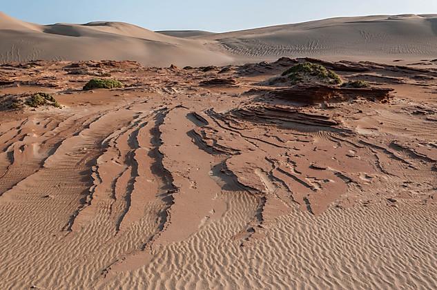 Petrified Sand