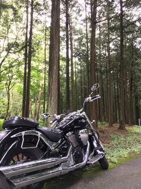 バイクで行きたいところは山々