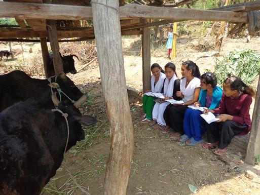 Jovem Cristã Espancada no Tibete Continua a Evangelizar