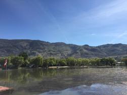 milfoil landscape view of lagoon.JPG