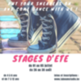 STAGE D'ETE.png