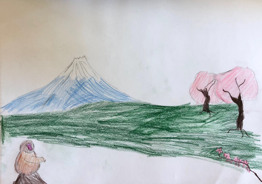 Fuji Mountain.JPG