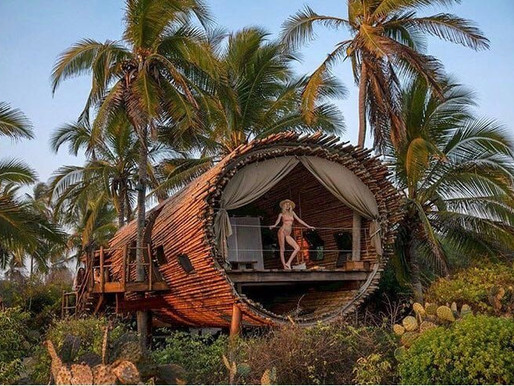 Playa Viva el paraíso escondido en Guerrero
