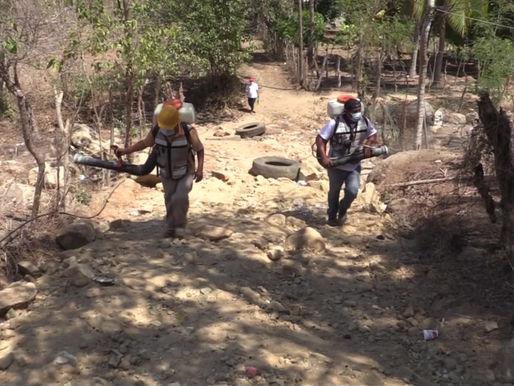 Intensifica Gobierno de Acapulco brigadas de fumigación y abatización