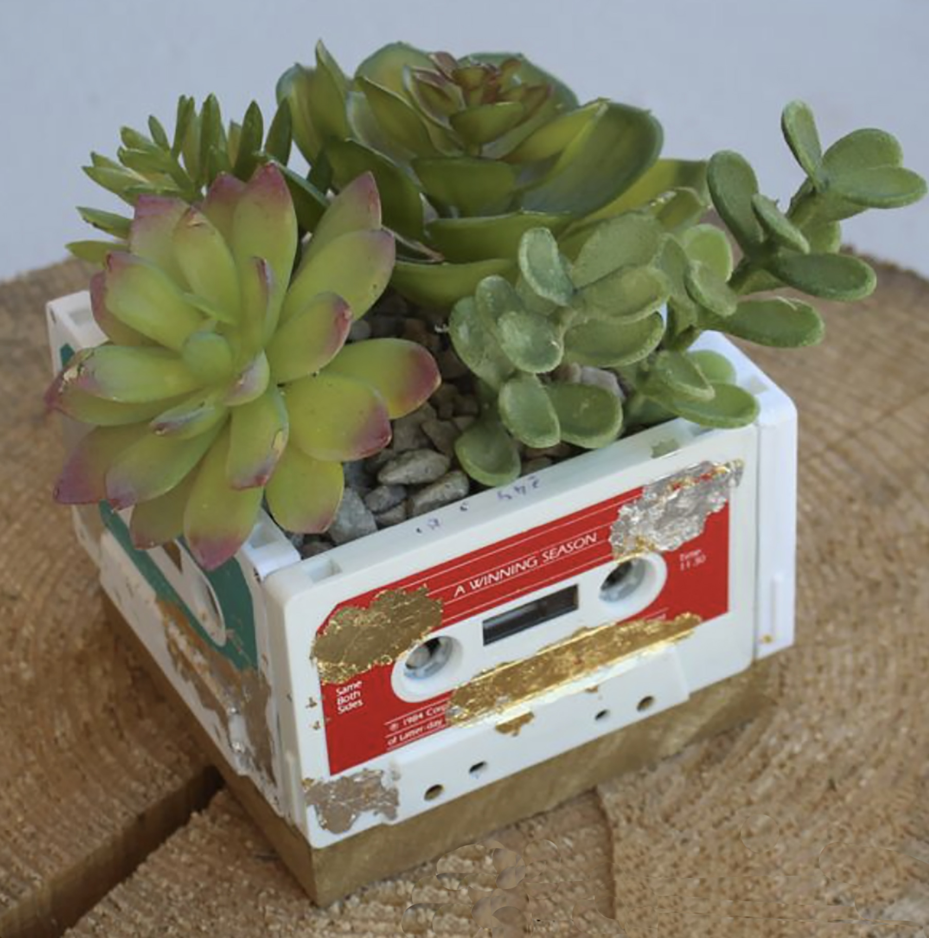 CassetteCasePlanter