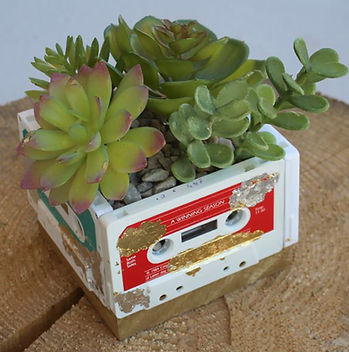 CassetteCasePlanter.jpg