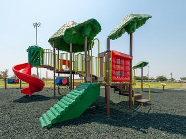 Kings Lions Park